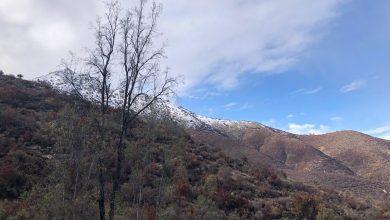 Photo of Sistema Frontal dejó importantes precipitaciones en la provincia de Petorca