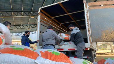 Photo of Usuarios de la Oficina Agrícola Municipal fueron beneficiados con recursos para mejorar su actividad productiva