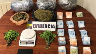Photo of PDI La Calera incauta cargamento de cannabis sativa en control carretero